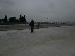 桥梁伸缩缝修复与更换施工方案