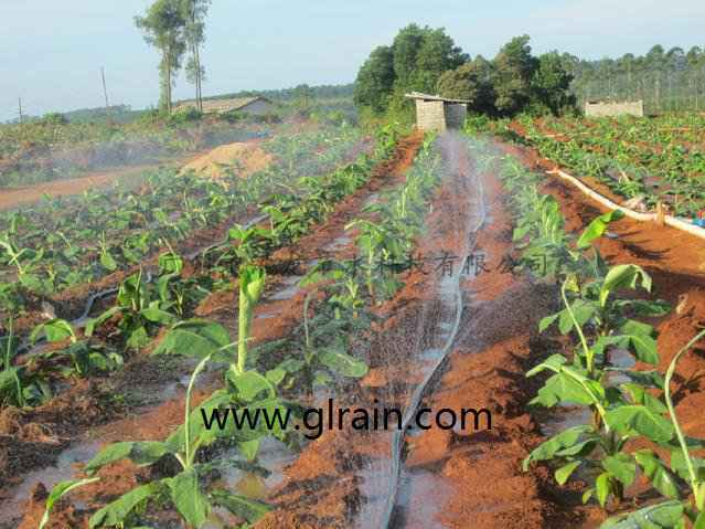 我想买10亩地农用的喷灌设备大概要多少钱?