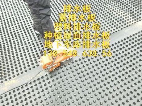 滁州排水板公司