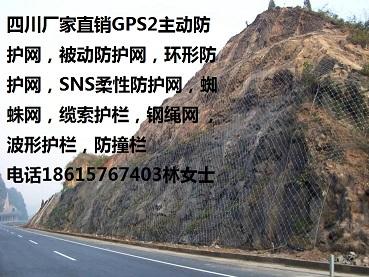 德阳RX-050RX-075被动防护网德阳GPS2主动防护网