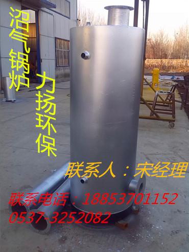 山东小型沼气锅炉