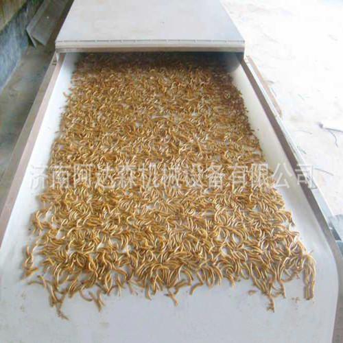 黄粉虫的干燥方法有哪些|最常用的黄粉虫干燥设备|微波烘干机