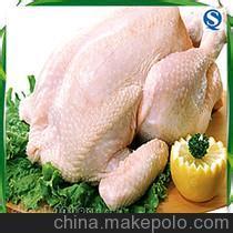 冷冻凤爪 鸡翅 童子鸡 三黄鸡 白条鸡