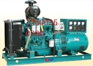 莘县出租发电机,维修及保养13606350990