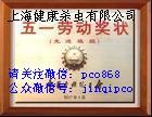 普陀除四害公司-灭杀白蚁公司-上海白蚁防治站-杀虫灭鼠-除白蚁