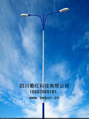 供应四川/重庆地区优质太阳能路灯/太阳能庭院灯/路灯厂家