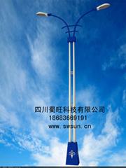 供应陕西/云南地区优质太阳能路灯/太阳能庭院灯/路灯厂家