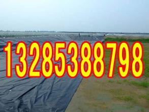 郑州藕池防渗布