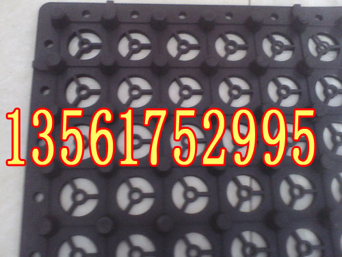 安庆塑料排水板销售)黄山HDPE疏水板厂家*报价