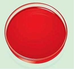 着色剂 辣椒红