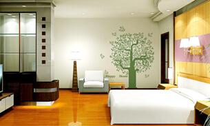 武汉婚房装修用什么墙面材料最好
