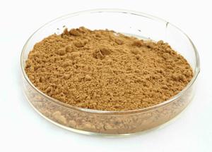 厂家供应灵芝提取物30%多糖