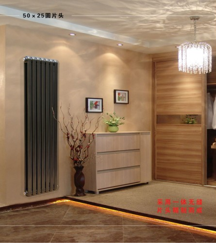 天津散热器品牌:50×25圆片头散热器