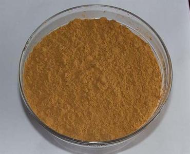 厂家供应墨角藻提取物0.1%有机碘