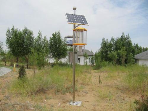 太阳能灭蚊蝇虫灯