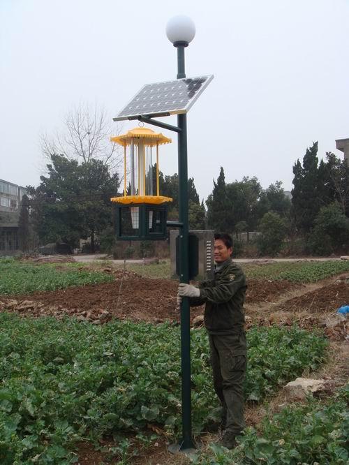 绿色防控技术太阳能杀虫灯