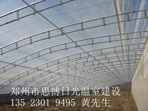 蔬菜大棚建造价格+日光温室建设