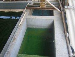电镀废水絮凝剂的选择及使用流程