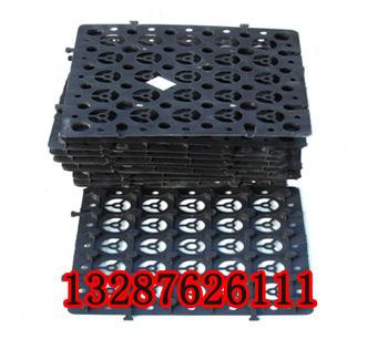 枣庄塑料植草格产地;防渗膜产地鱼塘防渗膜