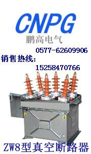专业制作ZW8-12/630-20,ZW8-12/630-20