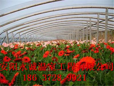 如何建造花卉大棚?咨询永诚农科