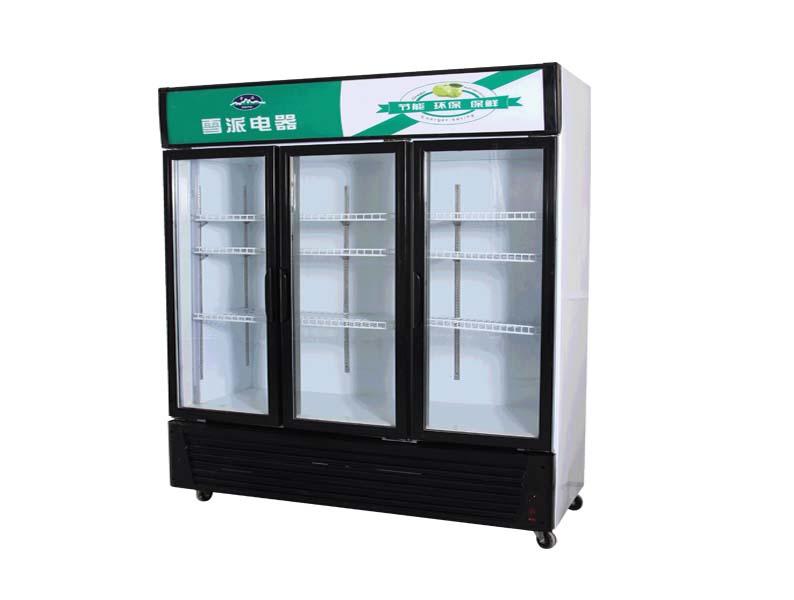 樱花冷柜 热销冷柜 超市冷柜 双门冰箱