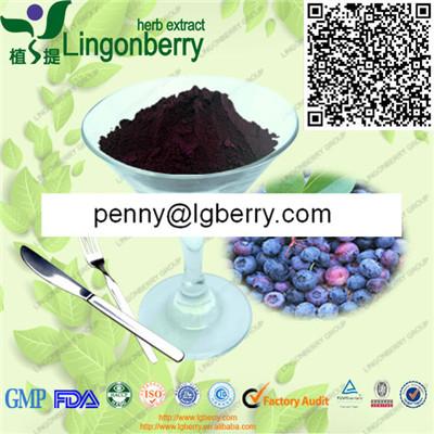 蓝莓果汁粉