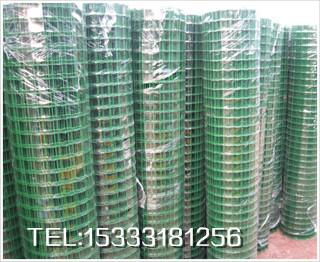 厂家现货供应涂塑荷兰网、电焊网质优价廉,量大从优