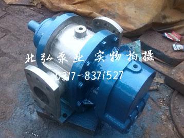 LC不锈钢罗茨泵
