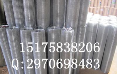 生产各种规格电焊网、荷兰网特殊规格可定做