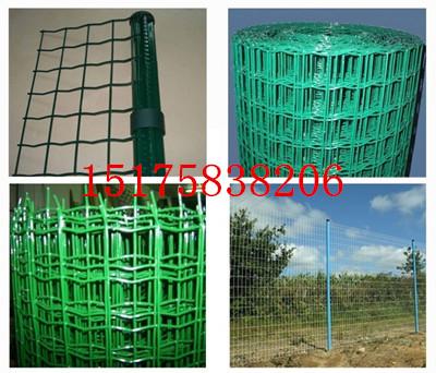 焦作养殖绿色围栏网|美观大方荷兰网|城市绿化带防护网