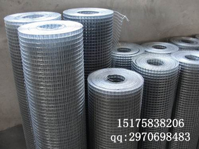 供应5乘7圈玉米网,玉米圈电焊网,改拔丝电焊网
