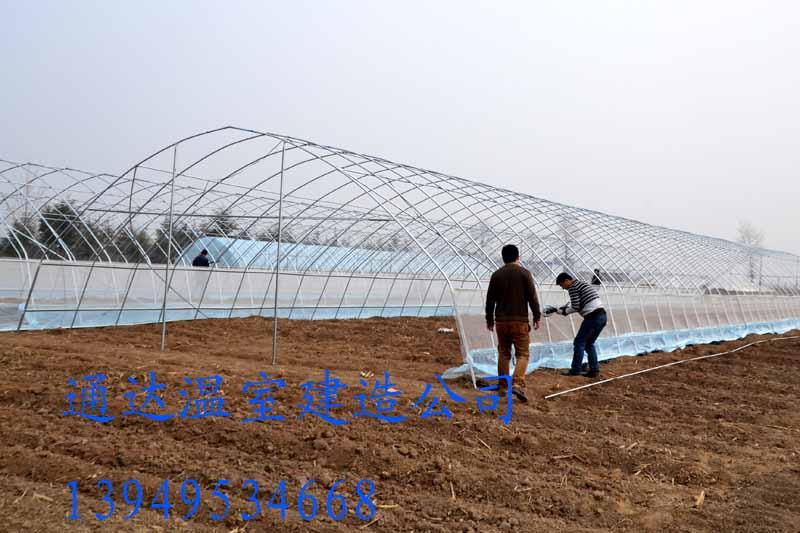新乡建造钢架大棚设计、施工方案