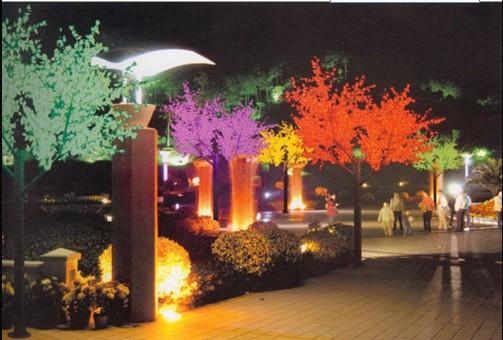 攀枝花LED景观灯