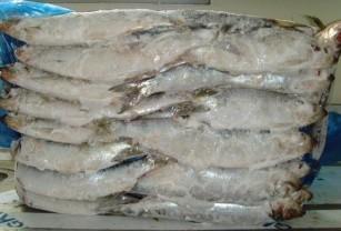 冷冻鳕鱼 银鱼 章鱼 鲳鱼