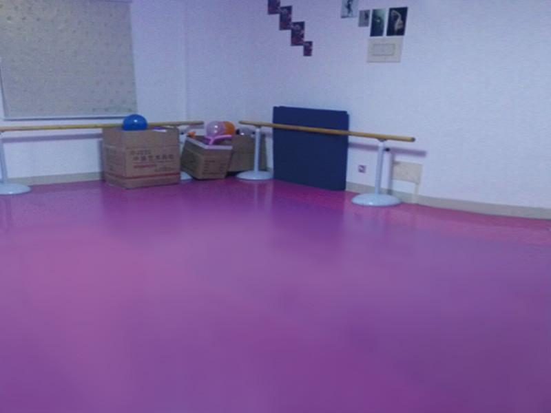 舞蹈地胶价格舞蹈房专用地胶舞蹈地胶板