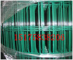 厂家直销环保涂塑荷兰网|防护网专卖|PVC养鸡网价格