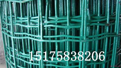 供应浸塑3mm围栏网、大丝圈山围栏网、新乡包塑农业网