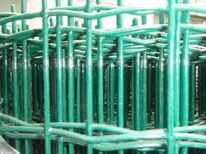 养鸡网哪里有|山东圈鸡用荷兰网|市政园林防护网|绿色铁丝网