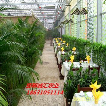 生态餐厅 餐饮温室