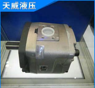 高压计量齿轮泵