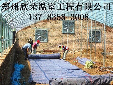 大棚建造设计厂家养鸡养殖大棚建造队伍