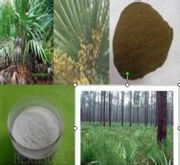 西安昌岳供应  纯天然 抗菌消炎    锯叶棕提取物