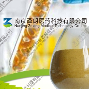 穿心莲提取物/穿心莲内酯工厂专业生产纯天然