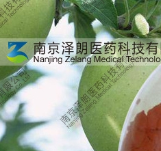 南京泽朗生物科技有限公司的形象照片