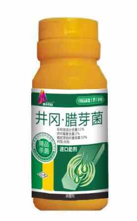 井冈霉素*腊芽--水稻纹枯病、立枯病特效药.