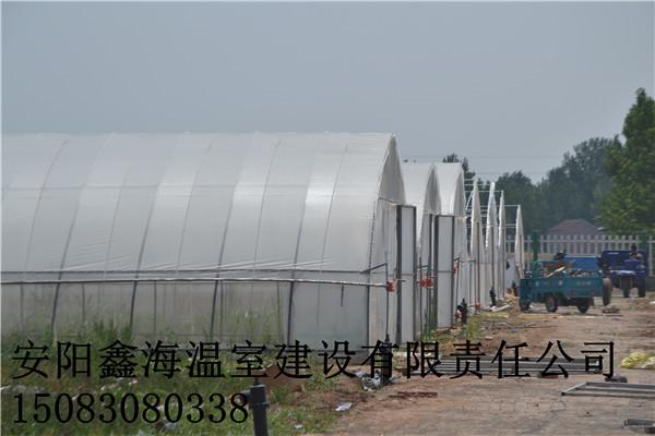 北方建造蔬菜大棚 巩义市草莓大棚建造实施方案
