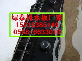 哈尔滨地下车库排水板//哈尔滨植草格厂家1521*5385149