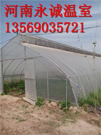搭建蔬菜温室大棚用什么材料好