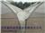 新型骨架大棚建造报价 滑县西瓜连栋拱棚建造加工